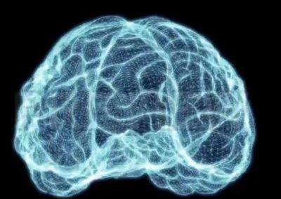 Hjärna färdigt hologram